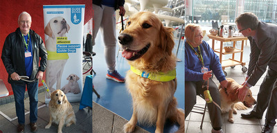 List size guide dogs